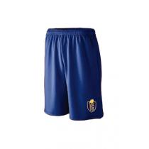 TCS - Boys' and Mens' Mesh Shorts